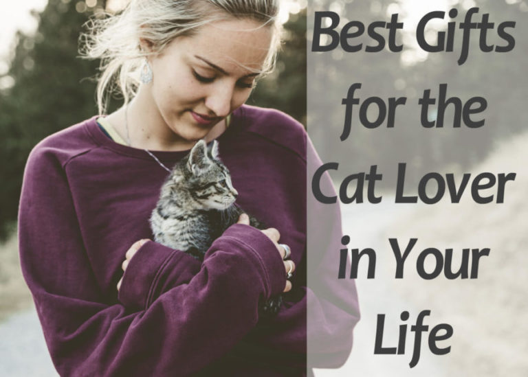 Best Gifts for the Cat Lover in Your Life