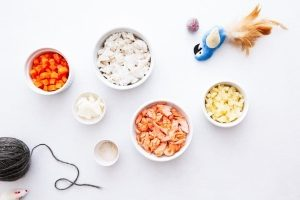 ingredient_bowls_cat_fish