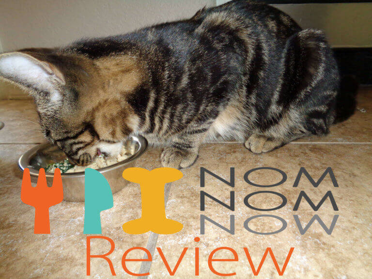 Nom Nom Cat Food Review