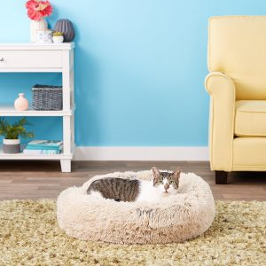 Best Cat Beds for Large Cats