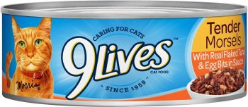 9 Lives Cat Food Review