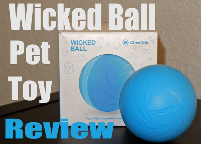 Wicked Ball Pet Toy Review