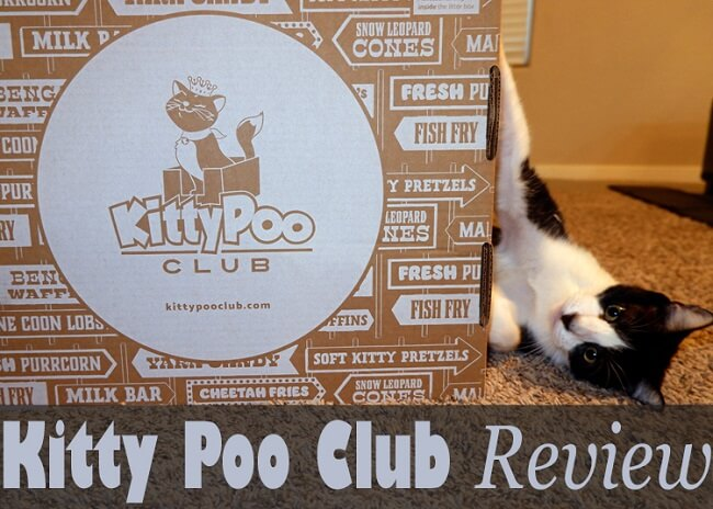 Kitty Poo Club Review